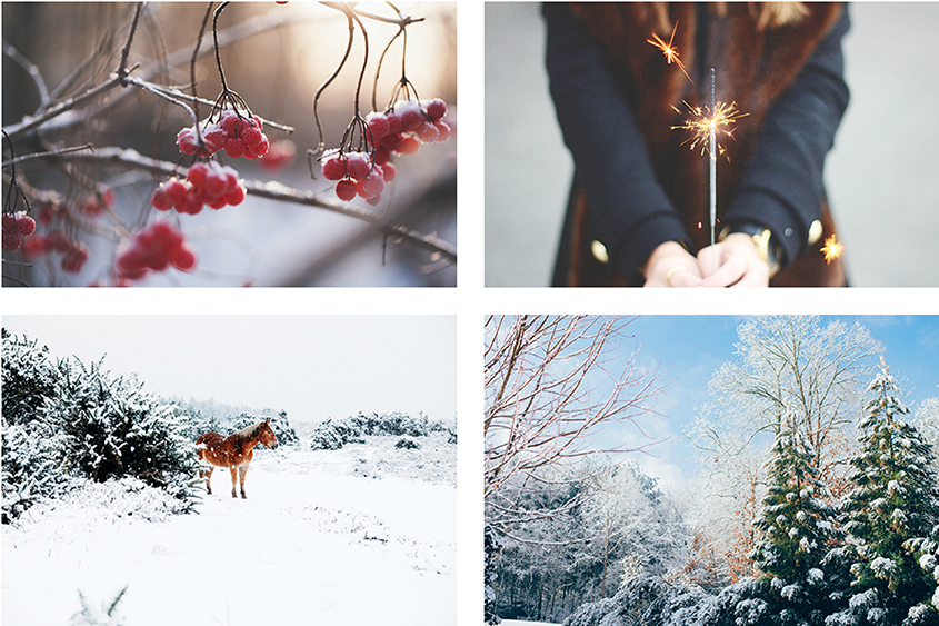 Winter Competition Collage 1