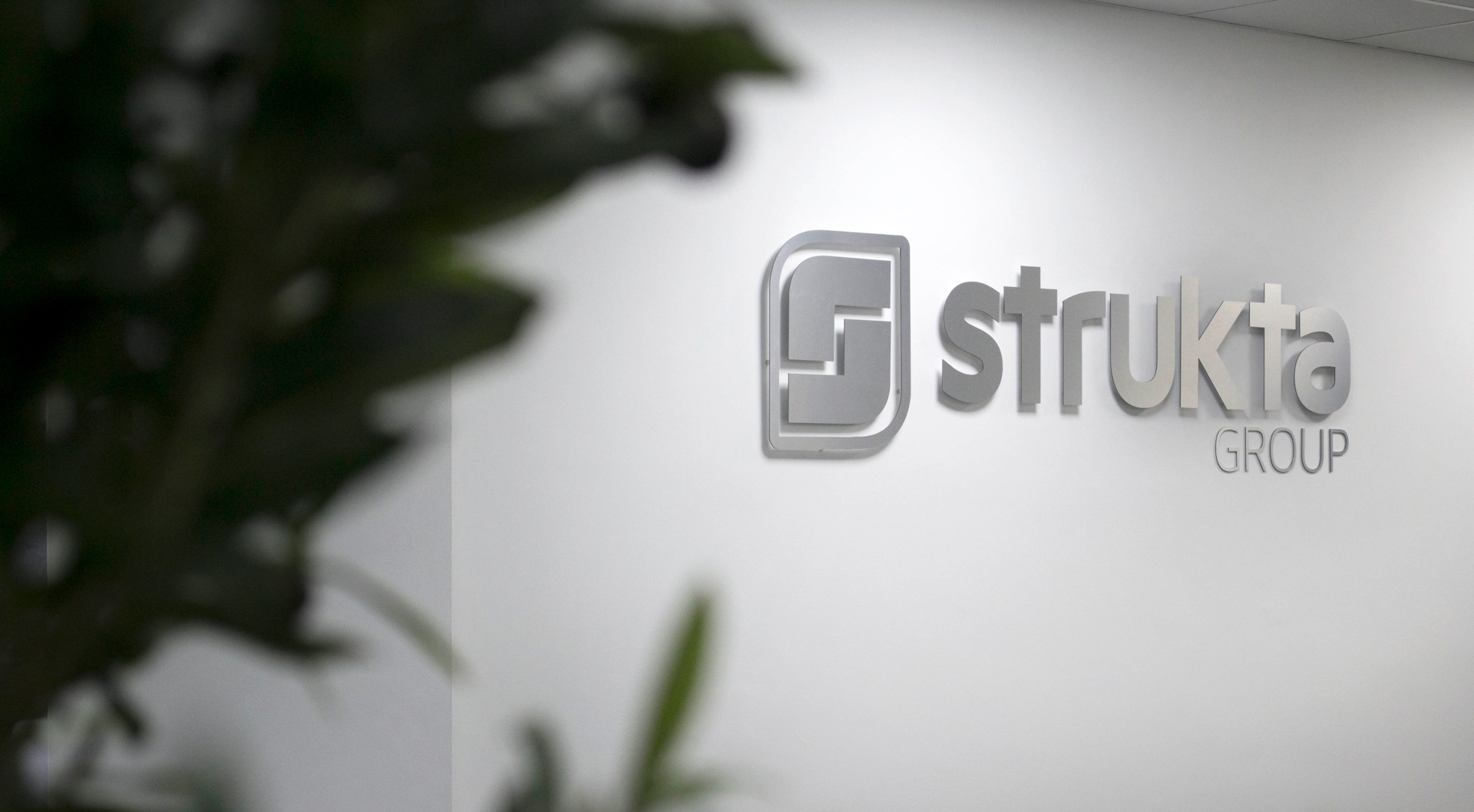strukta logo in the office